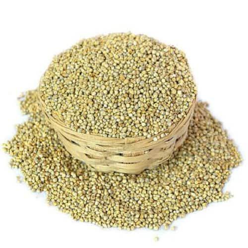 Futuro Organic Millets - Kambu - Pearl Millet - Bajra