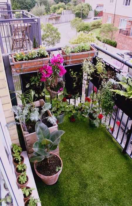 Futuro Organic Balcony Gardening 3