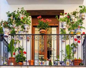 Futuro Organic Balcony Gardening