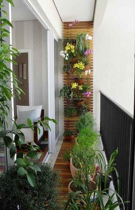 Futuro Organic Balcony Gardening 1